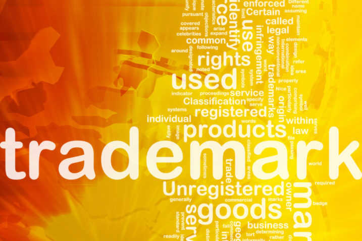 """""""Doing Business As"""" – Understanding the Difference Between an Entity Name, a Fictitious Name, a Domain Name, and a Trademark"""