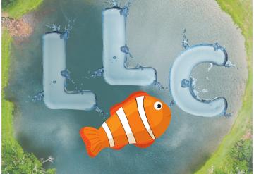 Small Fish in a Big LLC Pond
